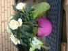 Blomma och smycket fr+Ñn l+ñgermedlemmarna